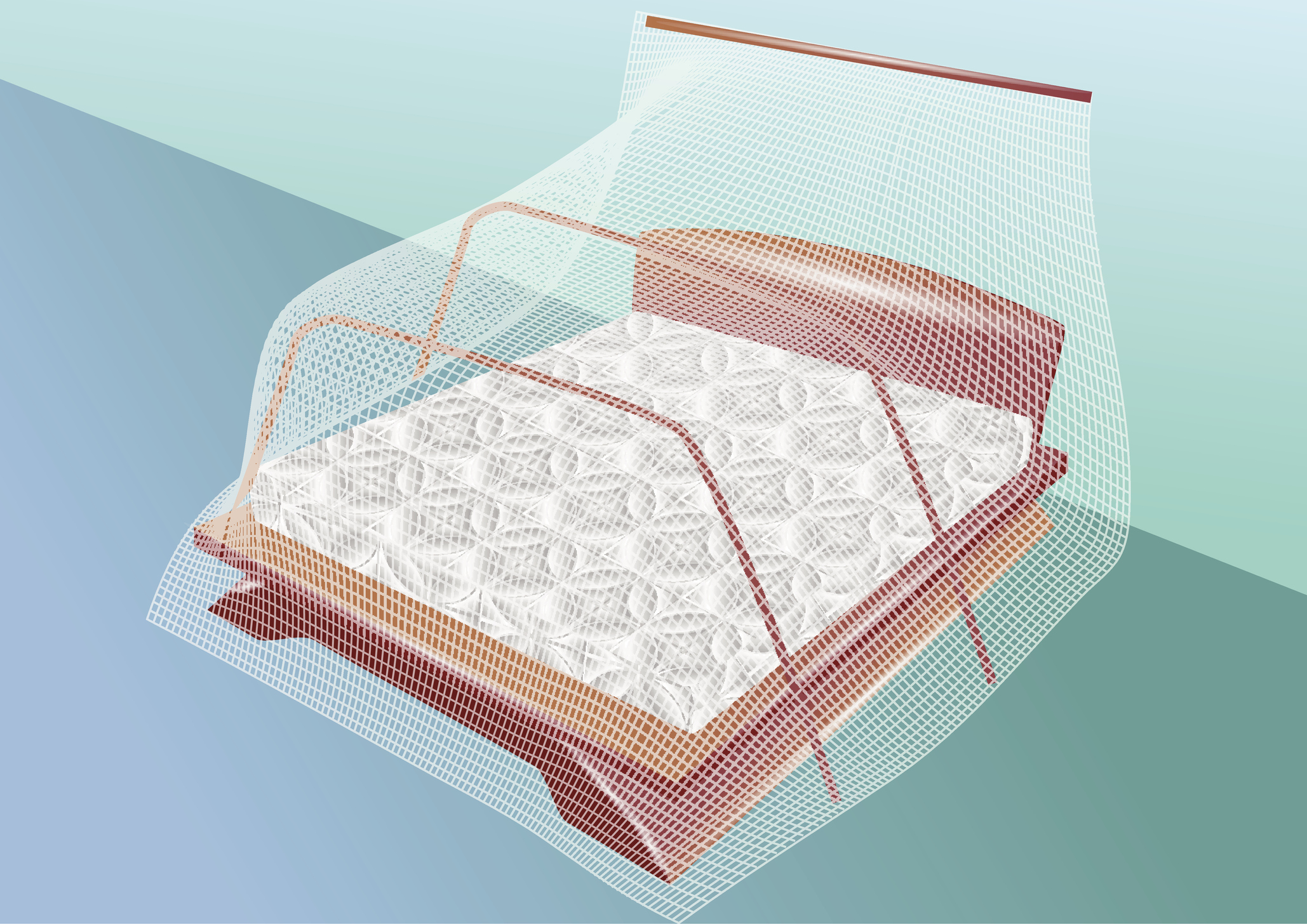 How Cheap Mosquito Nets Save Lives